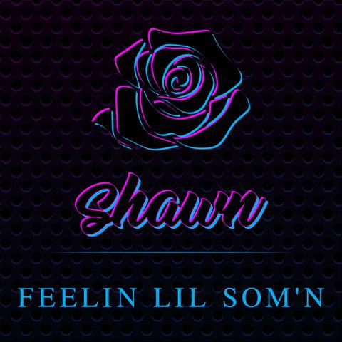 """Listen To Shawn Stockman """"Feelin Lil Som'n"""""""