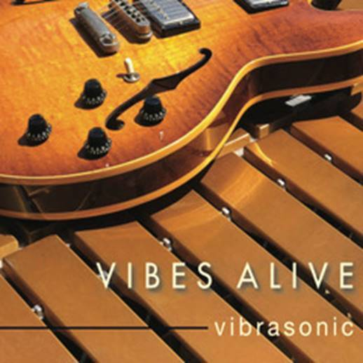 Vibes Alive Announces Their Third Album 'Vibrasonic' for March 6